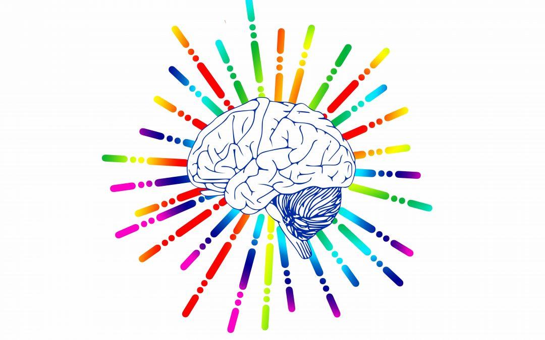 Enrichment 1: Porn & the Brain